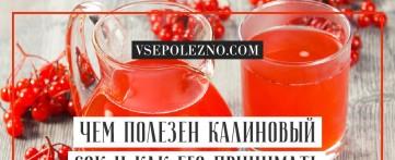 Чем полезен калиновый сок и как его принимать