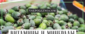 Какие витамины и минералы содержатся в фейхоа?