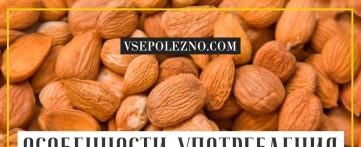 Особенности употребления абрикосовых косточек