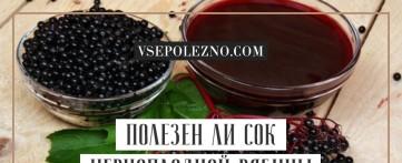 Полезен ли сок черноплодной рябины