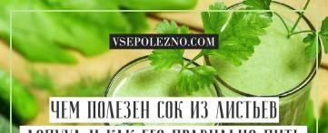Чем полезен сок из листьев лопуха и как его правильно пить