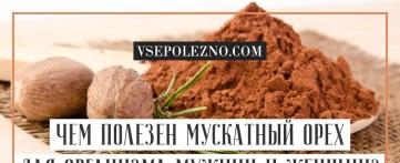 Чем полезен мускатный орех для организма мужчин и женщин?