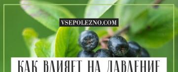 Как влияет на давление черноплодная рябина?