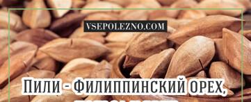 Что такое Пили. Филиппинский орех, его польза и вред
