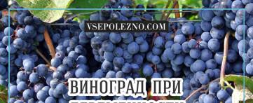 Беременным есть виноград полезно или вредно?