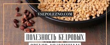 Полезность кедровых орехов мужчинам