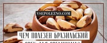 Чем полезен бразильский орех для организма?