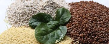 Чем полезен кускус пшеничный для здоровья организма