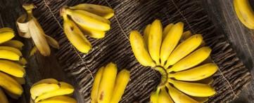 Маленькие бананы польза и вред – какие полезнее мини или обычные
