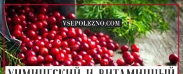 Химический и витаминный состав брусники