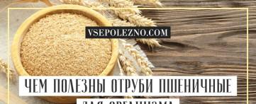 Чем полезны отруби пшеничные для организма