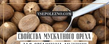 Свойства мускатного ореха для организма мужчин