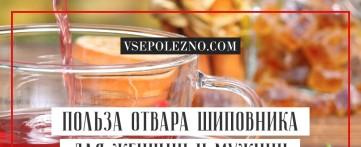Польза отвара шиповника для женщин и мужчин
