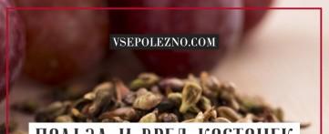 Польза и вред косточек винограда для организма