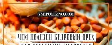 Чем полезен кедровый орех для организма человека?