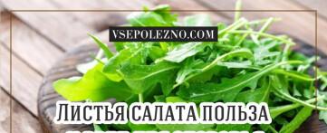 Салат листовой его польза и вред