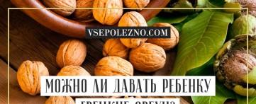 Можно ли давать ребенку грецкие орехи?
