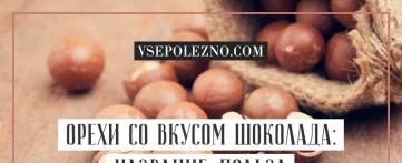 Орехи со вкусом шоколада: название, польза и возможный вред