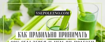 Как правильно принимать сок сельдерея и чем он полезен