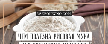 Чем полезна рисовая мука для организма человека