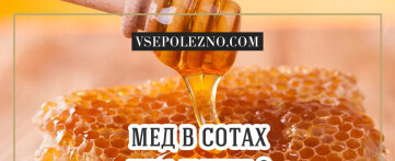 Мёд в сотах и чем он полезнее обычного