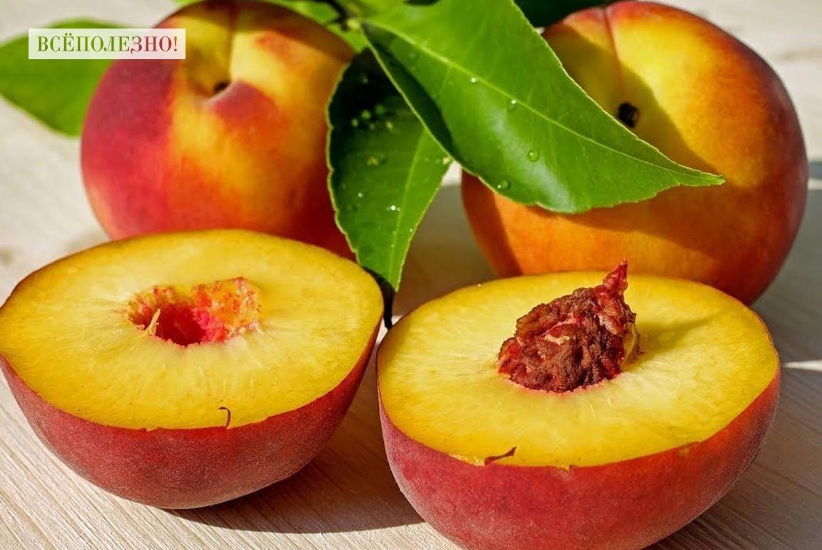 Польза и возможный вред персиков для здоровья человека