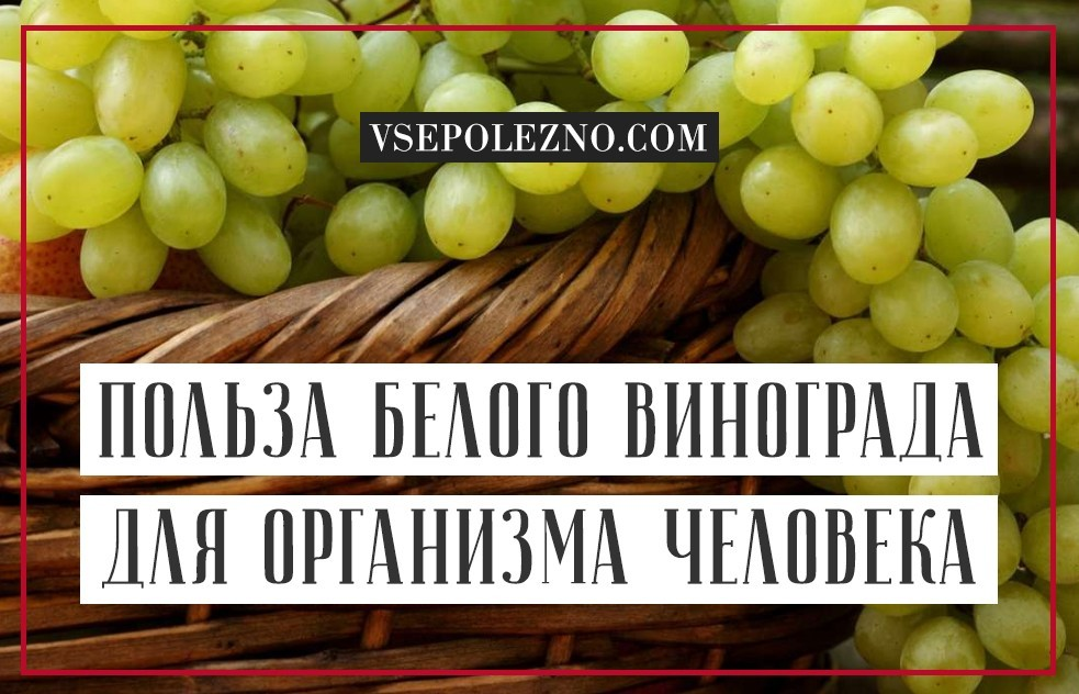 Польза И Вред Винограда Для Похудения. Виноград при похудении: польза и вред, отзывы