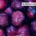 Самые полезные фрукты для печени
