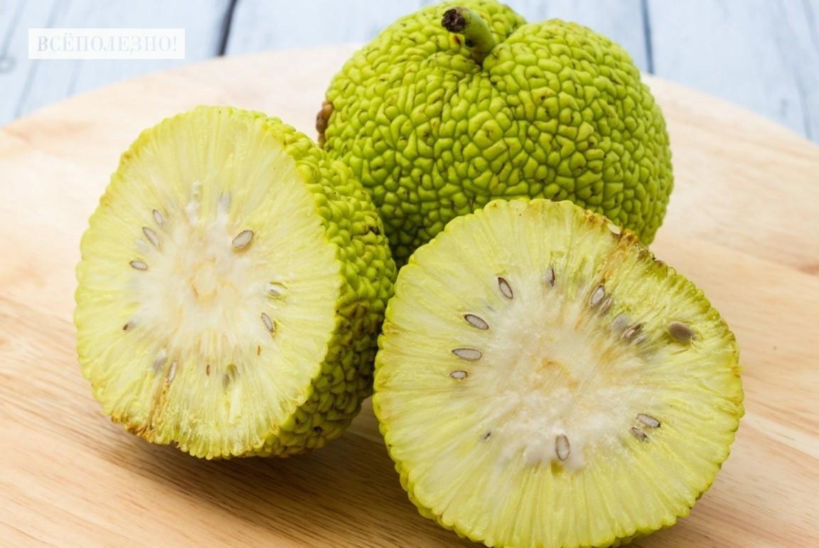Полезные свойства от употребления адамового яблока