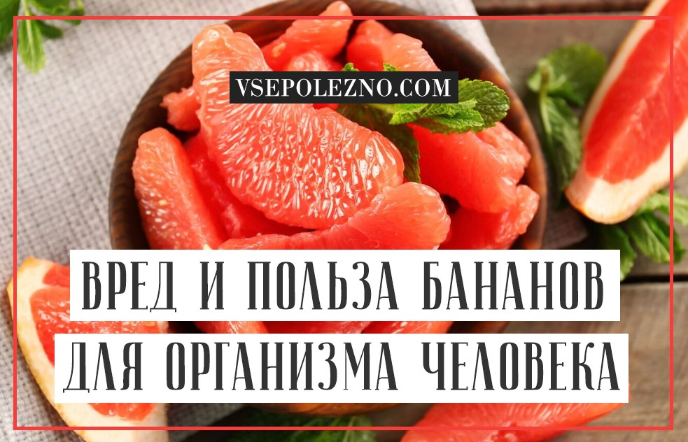 Корки грейпфрута польза и вред