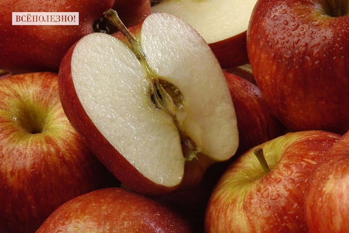 Химический состав яблока и его пищевая ценность