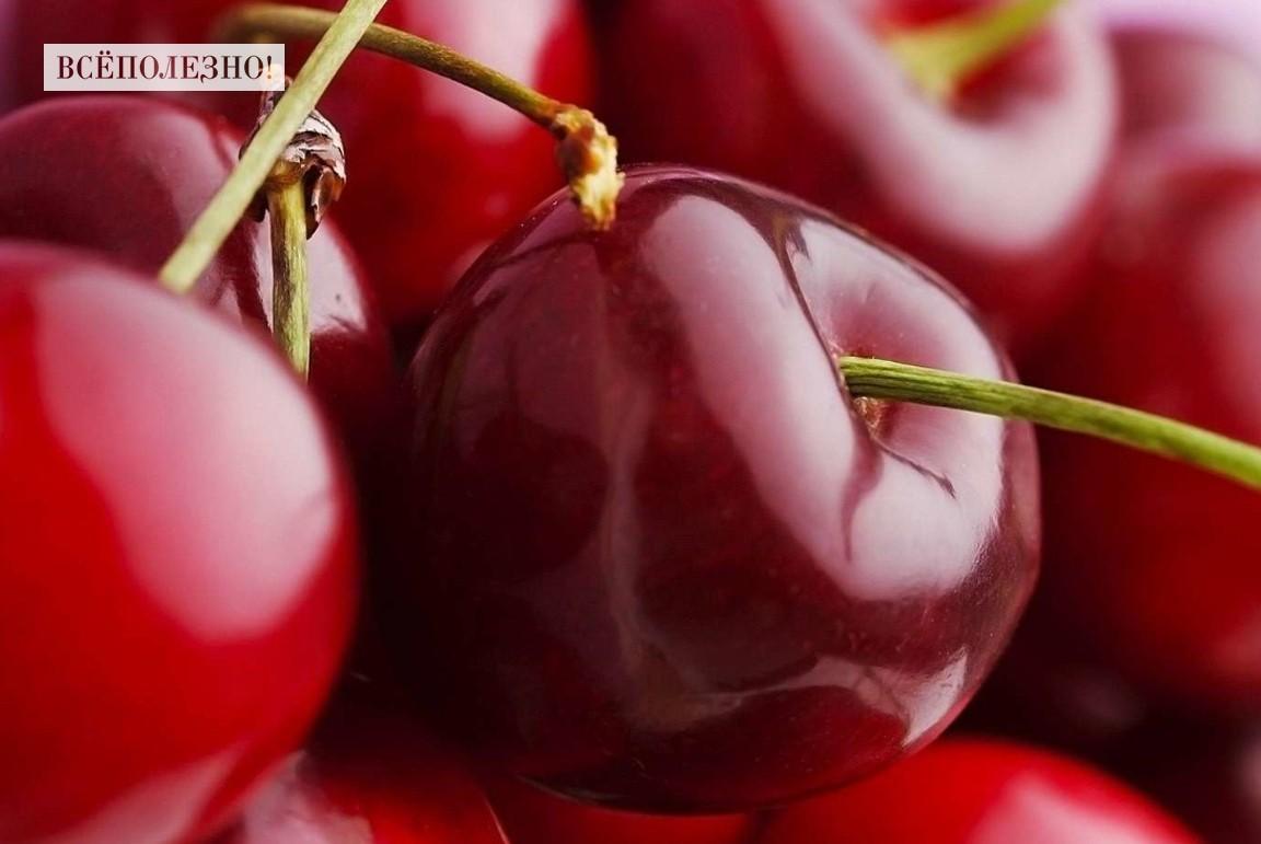 Чем полезна вишня для организма?