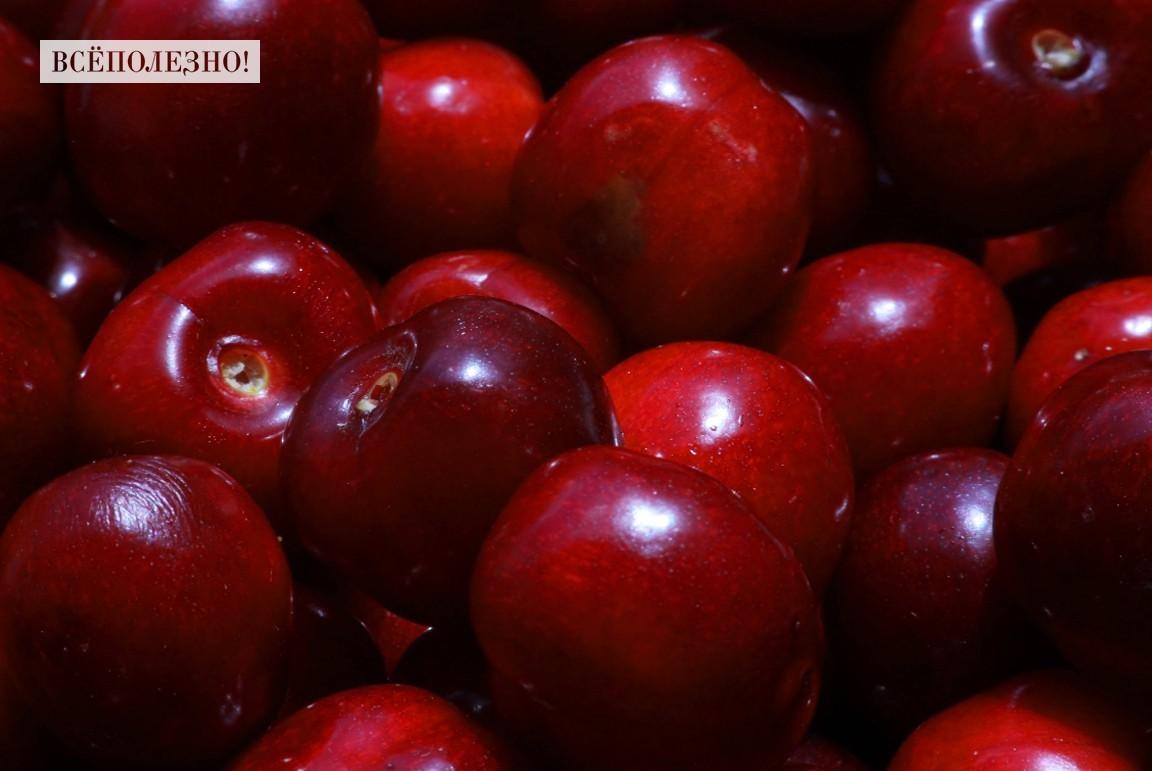 Чем полезна черешня для организма человека?