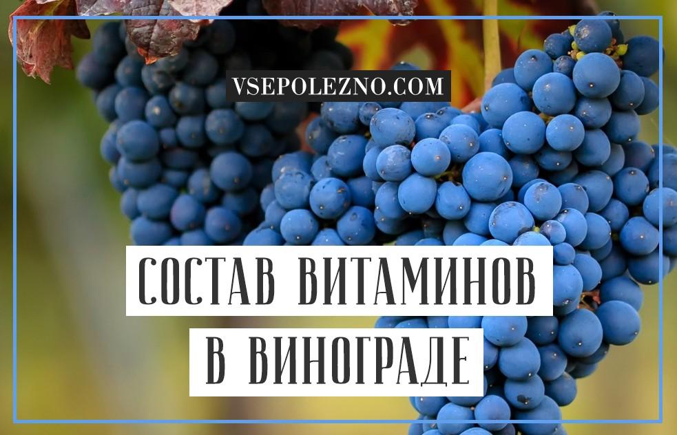 Химический состав элементов виноградной грозди
