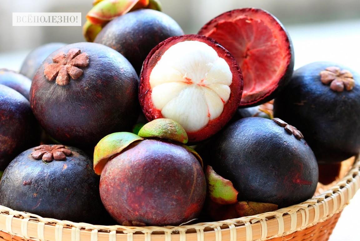 Что такое мангостин и чем он полезен?