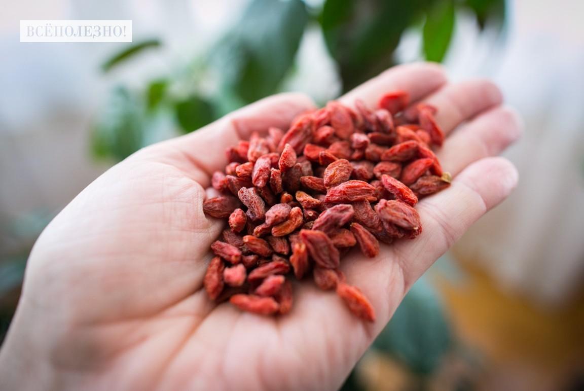 Полезные свойства и особенности применения ягод Годжи