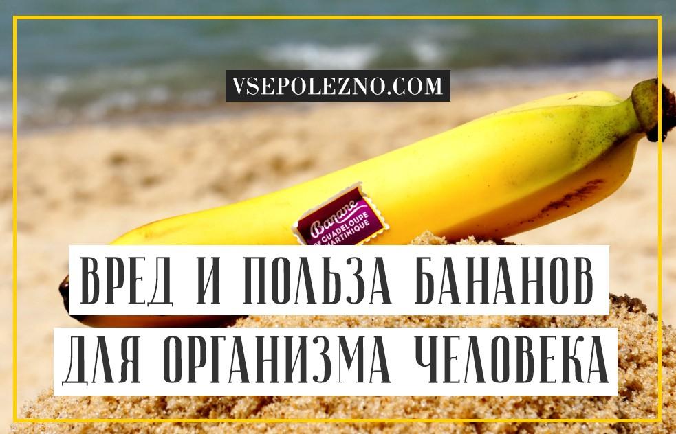 Чем полезны бананы для мужчин и их здоровья и потенции?