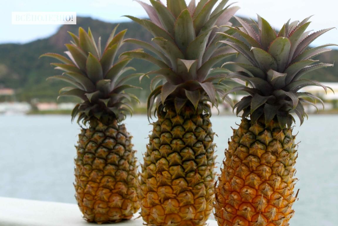 Какие витамины содержатся в ананасе