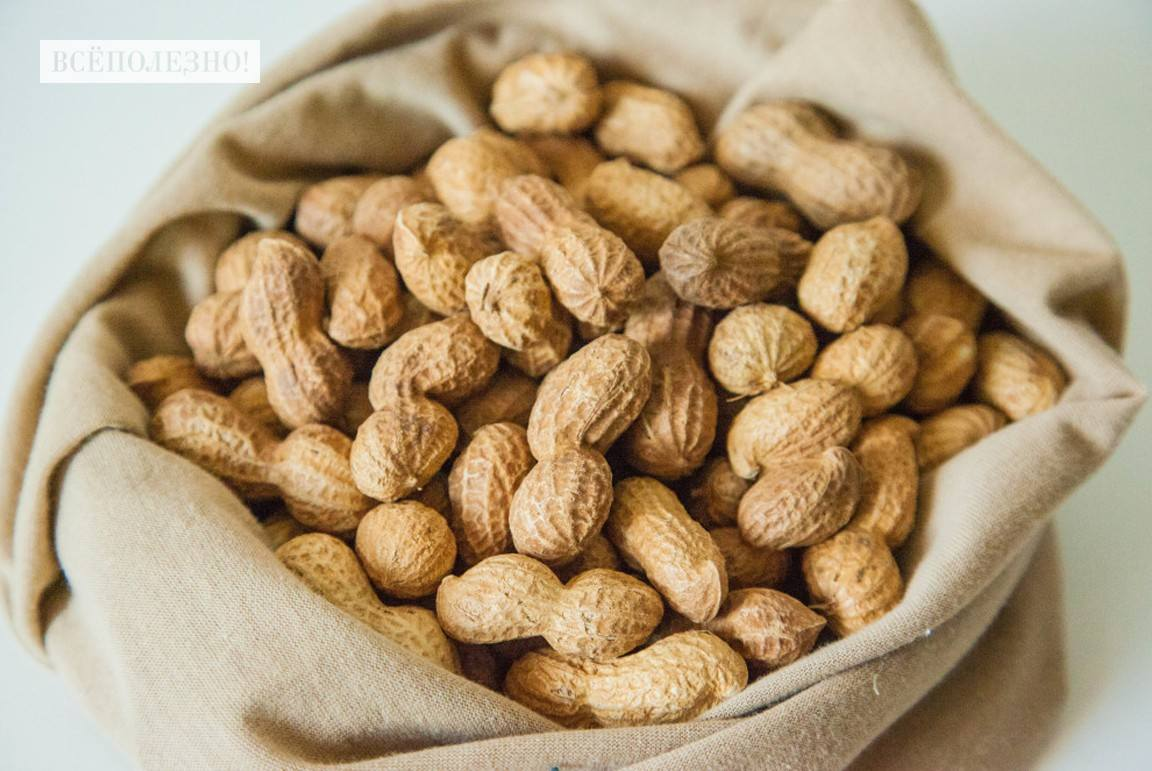 Список самых полезных орехов для сердца и сосудов