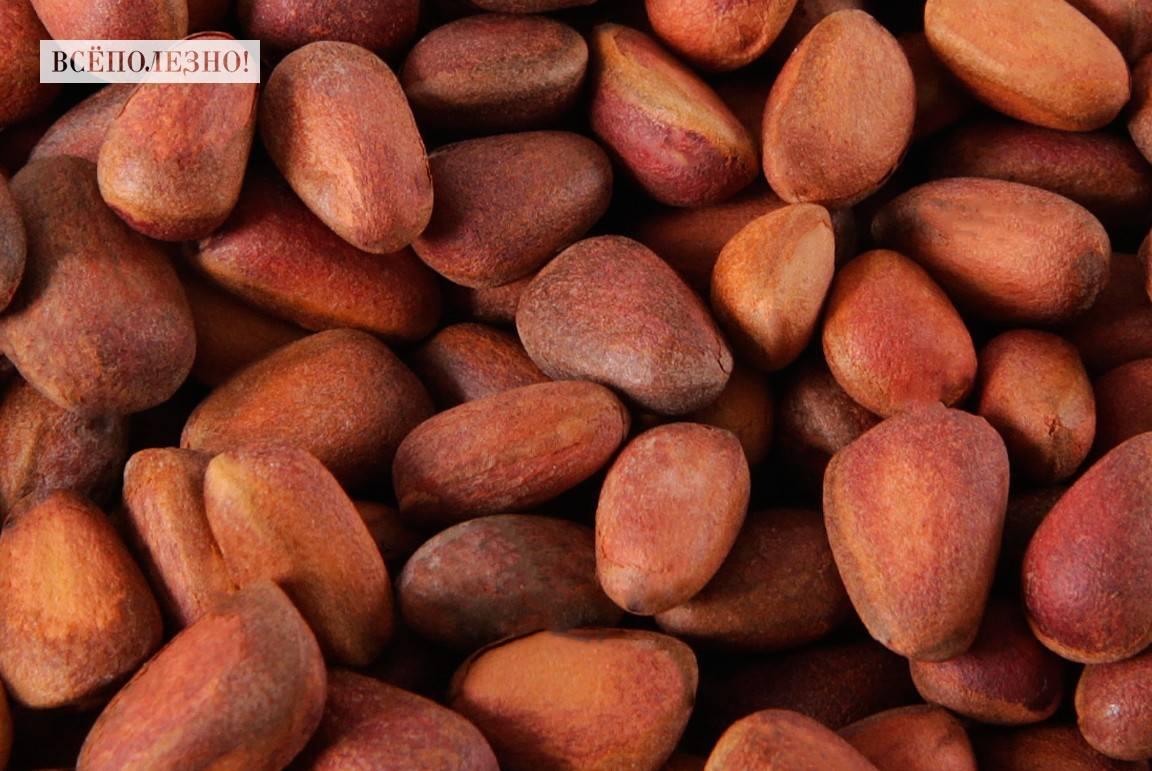 Чем полезны кедровые орешки для беременных?