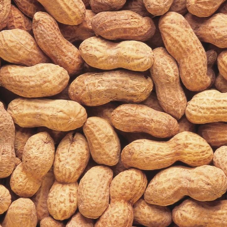 Какие орехи самые полезные для похудения?