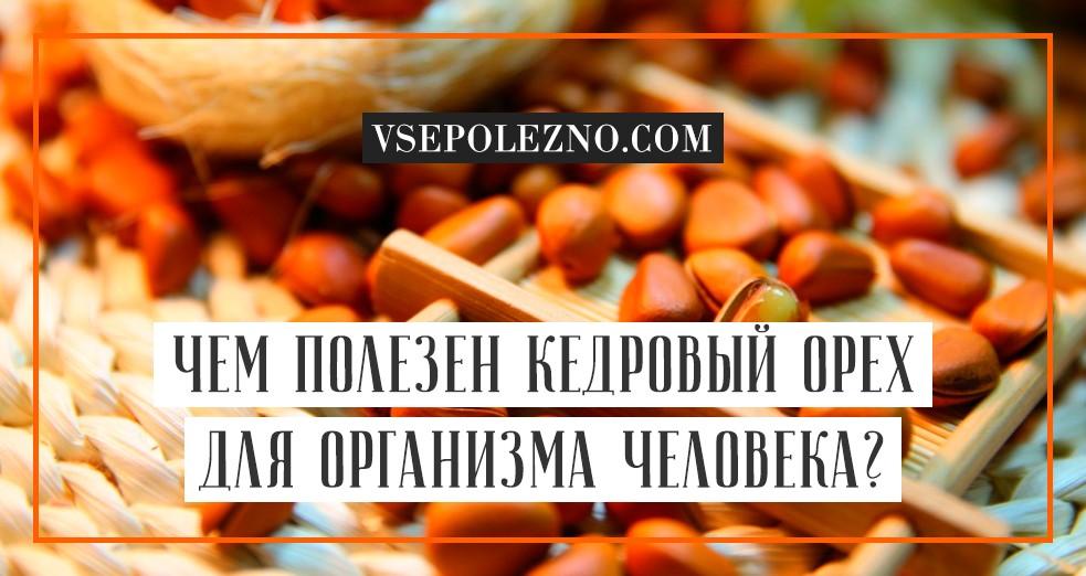 Кедровые орешки полезные свойства и противопоказания