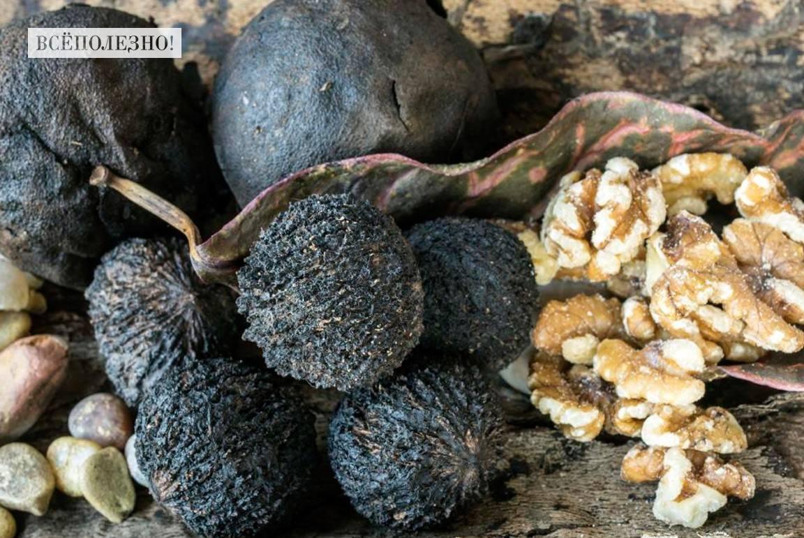 Чем полезен черный орех для организма