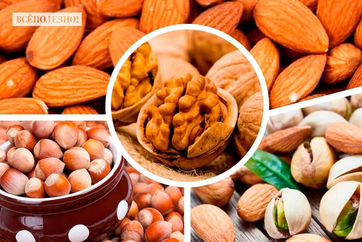 Какие орехи самые полезные для детей