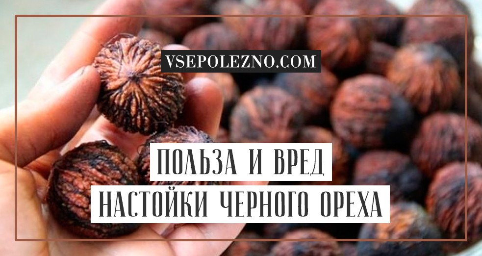 Настойка черного ореха - инструкция по применению