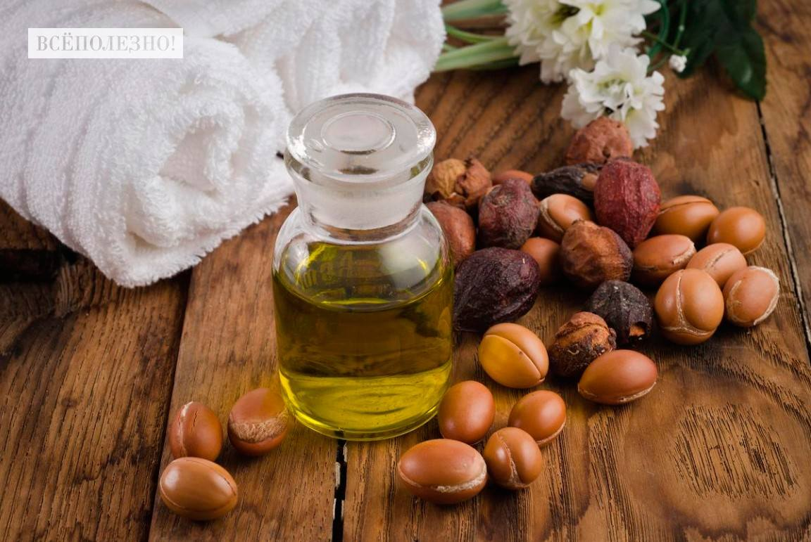 Чем полезно масло макадамии?