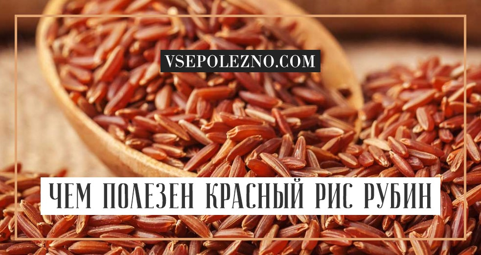 Рис сорт рубин