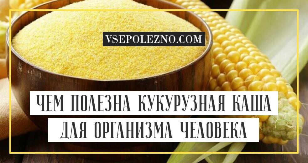 Кукурузная крупа: как называется, польза и вред для здоровья человека, состав и калорийность, противопоказания