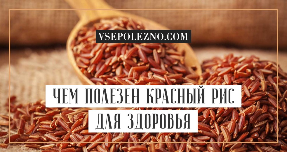 Красный рис Рубин - о свойствах, пользе и приготовлении