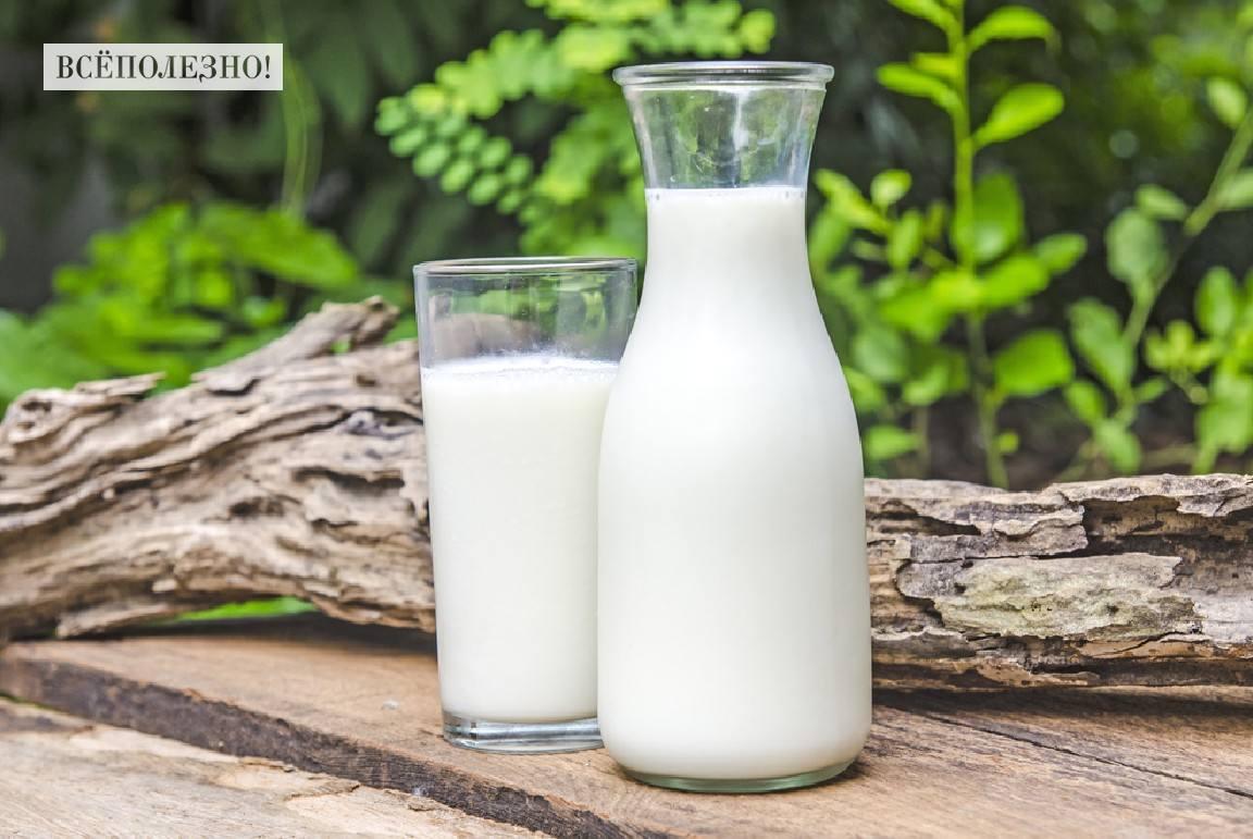 Можно ли детям пить молоко